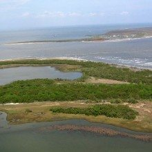 Louisiana's Barataria Bay Suffers From BP Oil Spill