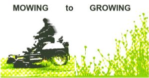 Mowing to Growing