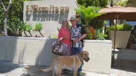 Travels with Journey to Beverly Hills and stay at the Exclusive Pet-Friendly 5 Paw L'Ermitage Hotel