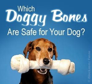 bones-can-kill-your-dog