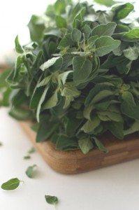 oregano_herbs_healthy_lifestyle_antioxidant