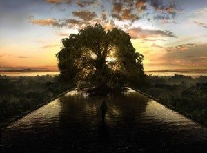 Terrence Malick Tree of Life film review