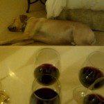 Wine Tasting Montage