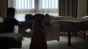 Ko Massage Ermitge