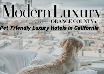 A Dog's Life: 6 Pet-Friendly Luxury Hotels in California